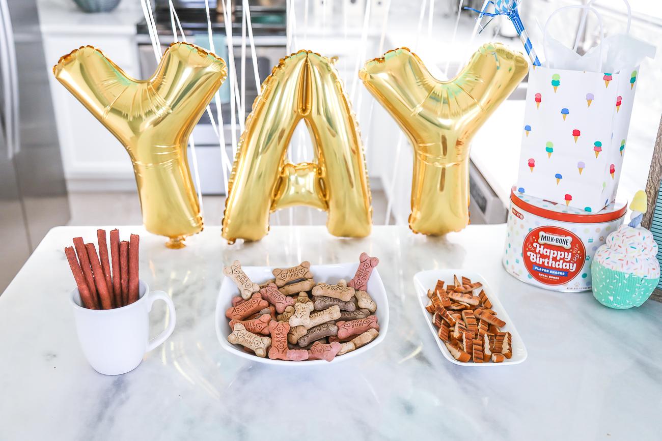 Dog Birthday Party Milkbone Birthday Tin Pawty USA Dog Treats