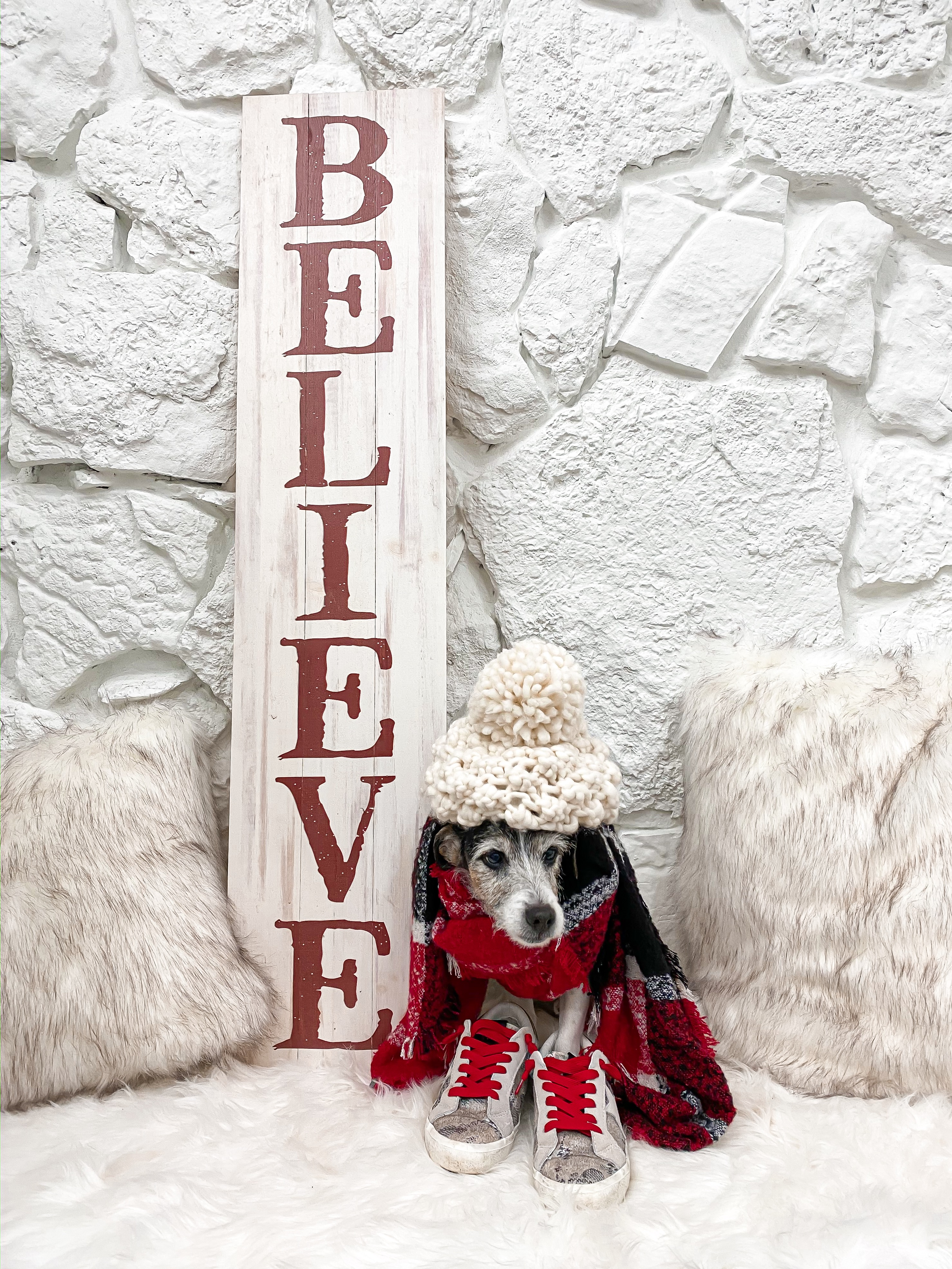 Laura beverlin casual christmas winter outfit zeppelin dog outfit2